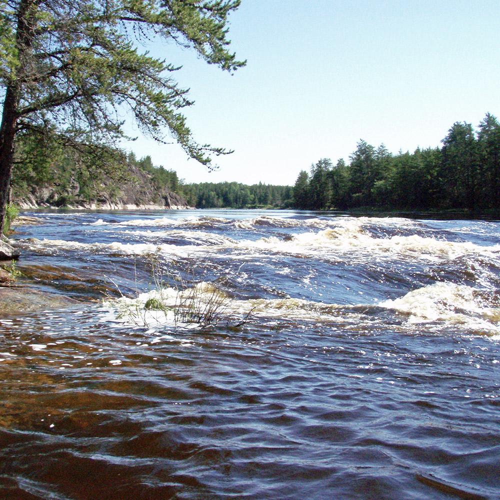 Bloodvein River (Black Feather)