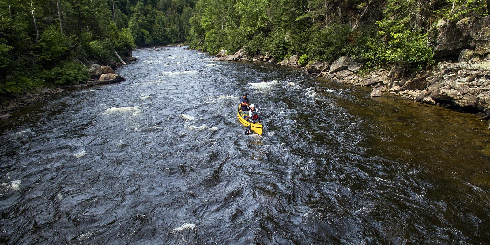 Noire River, Quebec (Black Feather)